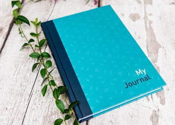 Open Narrative - My Journal Blue